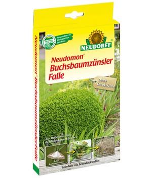 buchsbaum buxus online kaufen bestellen baldur garten. Black Bedroom Furniture Sets. Home Design Ideas
