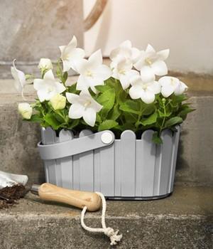 Gartendeko neuheiten online kaufen bestellen bei baldur for Gartendeko neuheiten