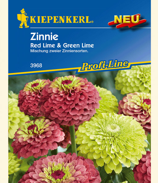 Zinnie 'Red Lime & Green Lime'