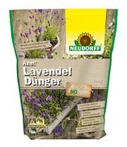 blauer lavendel 1a pflanzen online kaufen baldur garten. Black Bedroom Furniture Sets. Home Design Ideas