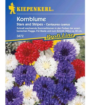 Kornblume 'Stars and Stripes'